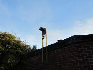 CCTV High Mount Camera